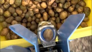 getlinkyoutube.com-Spedo Potato Planter available at Everything Attachments
