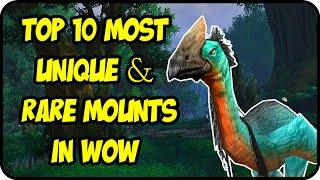 getlinkyoutube.com-WoW - Top 10 Most Unique & Rare Mounts in World of Warcraft