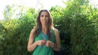 getlinkyoutube.com-How to Create Sexual Energy Naturally - Rainbeau Mars