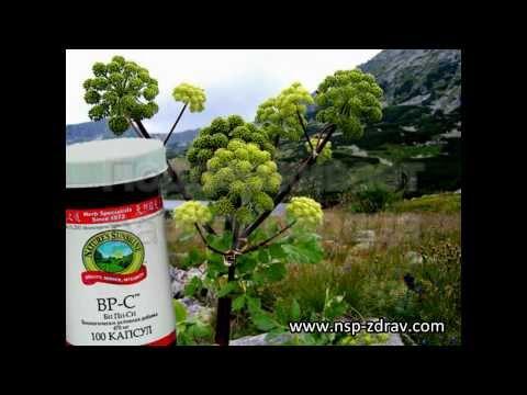 BP-C от NSP: здоровое сердце, нормальное давление!