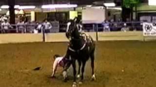getlinkyoutube.com-Woman Crushed By Horse