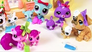 getlinkyoutube.com-LPS Mommies Series Mommy and Baby Littlest Pet Shop HAUL Opening toy review