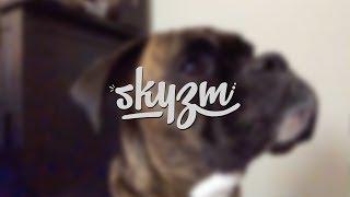getlinkyoutube.com-Skyzm Has Shaved! + Dog