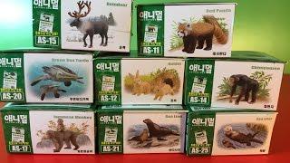 getlinkyoutube.com-8種類のタカラトミーAnia Animal Adventure - 韓国語パッケージ(00488 jp)