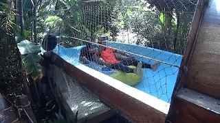 getlinkyoutube.com-Caribbean Water Slide at Wet World Water Park