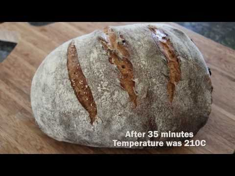 WILD SOURDOUGH STARTER NO KNEAD BREAD