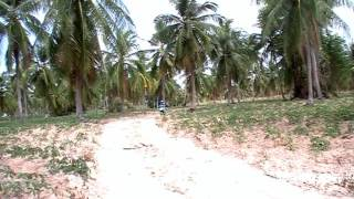 getlinkyoutube.com-Таиланд   подробности постоянного проживания