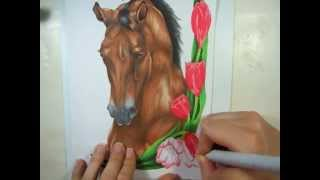 getlinkyoutube.com-Coloring a Horse Drawing in Copic Markers
