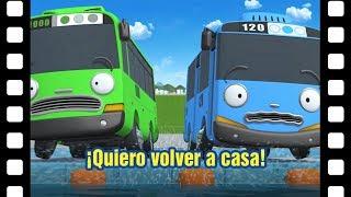 📽¡Quiero volver a casa! l Teatro de Tayo #25 l Tayo el pequeño Autobús Español