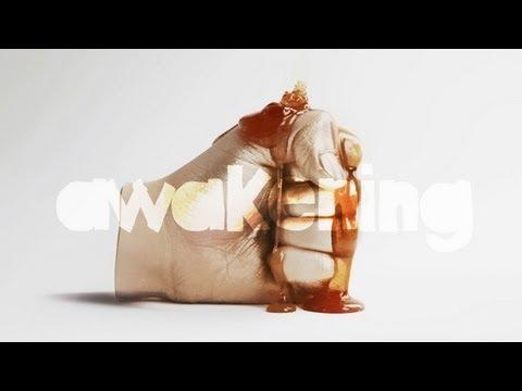 Everything Is Made In China  - Awakening: l