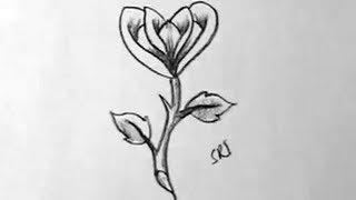 getlinkyoutube.com-How to draw A simple rose flower in Easy way