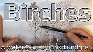 Birches - A watercolor by Erik Lundgren