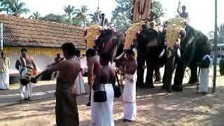 getlinkyoutube.com-Nayarambalam Ulsavam