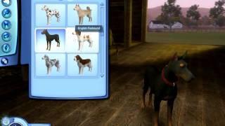 getlinkyoutube.com-The Sims 3 Pets: Big Dog Breeds