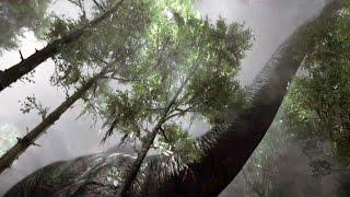 getlinkyoutube.com-PS4 - Robinson The Journey Trailer (PlayStation VR)