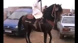 getlinkyoutube.com-رقص الخيل من بني درار 2013