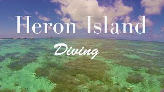 Dive Heron Island - The Great Barrier Reef