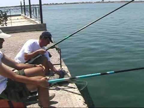 Pole fishing - Απίκο στο λιμάνι για κεφάλους