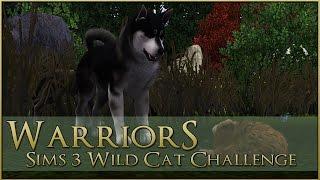 getlinkyoutube.com-Raid on the Junkyard Dog Pack!! || Warrior Cats Sims 3 Legacy - Episode #15
