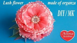 getlinkyoutube.com-Пышный цветок из органзы. Мастер класс / Lush flower made of organza DIY
