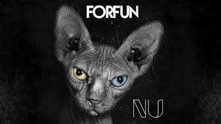 Forfun - Stoked