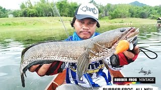 getlinkyoutube.com-เปิดหมายปลาช่อน ระเบิดความมัน  เขื่อนศรี