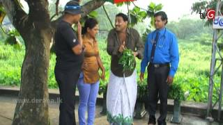 getlinkyoutube.com-Nataka Marai Namaya Hamarai   Episode 34 23rd July 2015