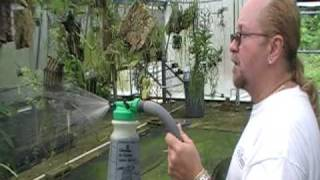 getlinkyoutube.com-The Orchid Doctor - Orchid Watering, Lighting and Ventilation Part 2 - orchidmania south florida