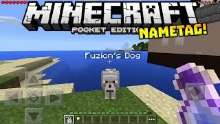 getlinkyoutube.com-NAMETAGS in MCPE!! - HIDDEN FEATURE!! - Minecraft PE (Pocket Edition)