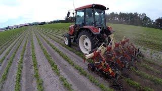getlinkyoutube.com-大豆カルチ 空撮 2015.7.9 Yanmar EG58 - Soybean cultivator   (Hokkaido, Japan)