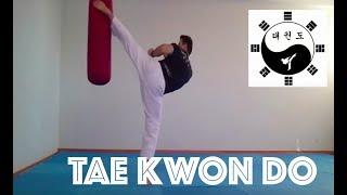 Técnicas de Chutes do Taekwondo