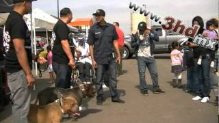 getlinkyoutube.com-Rosarito Bully Show 2011