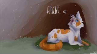 getlinkyoutube.com-Warrior Cat PMV MAP | Faded