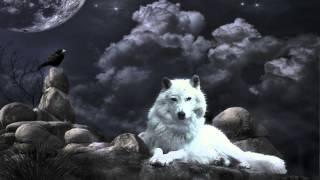 getlinkyoutube.com-Klaus Schulze - Wolf's Ponticelli