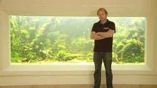 getlinkyoutube.com-ANIMALISCH die Tiersendung Nr.09  10`000 Liter Aquarium mit Andi Hofstetter