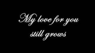 Evanescence - Understanding - Lyrics