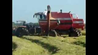 getlinkyoutube.com-Colheitadeira Massey Ferguson MF 32SR - Revenda: SAMA Maquinas Agrícolas Ltda.