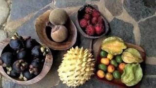 getlinkyoutube.com-Fruits of Rainy Season