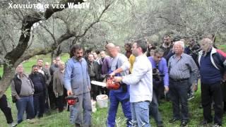 getlinkyoutube.com-Μάθημα για το κλάδεμα της ελιάς