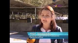В Сочи работают 226 крестьянских фермерских хозяйств