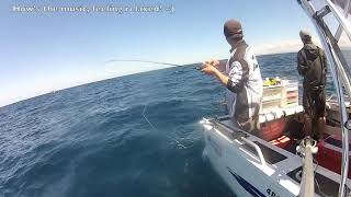 getlinkyoutube.com-Inchiku Jigging Techniques for Snappers - Sydney