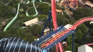getlinkyoutube.com-STUCK on a Roller Coaster in the RAIN!!  Sheikra at Busch Gardens Tampa, Florida