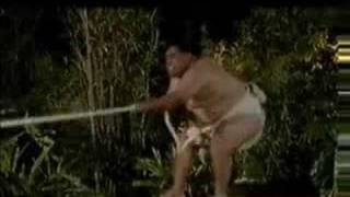 getlinkyoutube.com-Sumo Wrestler VS. Orangutan