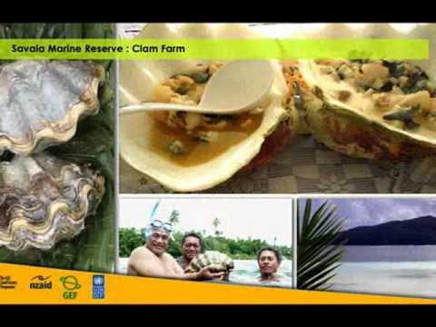 Savaia Marine Reserve- Samoa.wmv