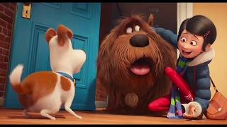 getlinkyoutube.com-THE SECRET LIFE OF PETS All Trailers