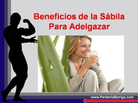 Beneficios de la Sabila Para Adelgazar