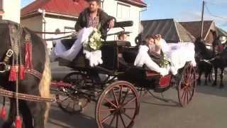 getlinkyoutube.com-Mersul Mirilor Iuliu si Ioana spre Cununie cu caleasca