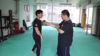 Jeet Kune Do & Jun Fan Gung Fu Daily Training 2