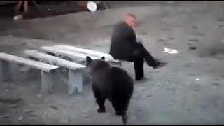 getlinkyoutube.com-Russian man doesn't give a damn about bear roaming nearby