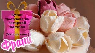 getlinkyoutube.com-Цветы из мастики. Бутон тюльпана из сахарной мастики (мастер-класс).